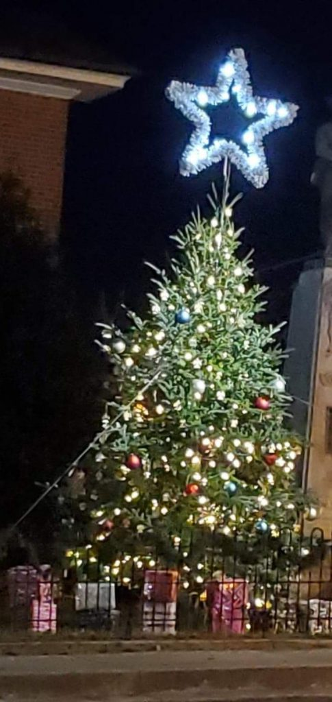 Tree glows with remembrance